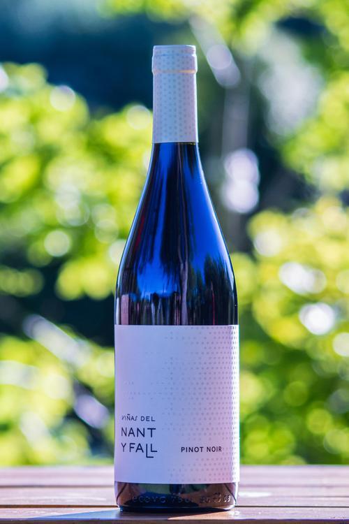 Copia de Pinot Noir